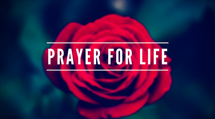 Day of Prayer for the Legal Protection of Unborn Children